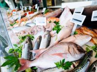 Niezdrowe ryby. Jakie ryby należy wykluczyć z diety?