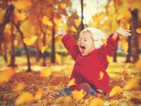 JESIEŃ. Cztery pory roku - jesień wokół nas!
