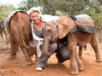 Gwiazdy walczą o życie afrykańskich słoni