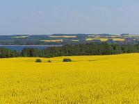 OTOP: biopaliwa bardziej efektywne i zrównoważone?