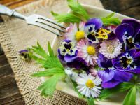 Jedzenie z łąki. Jakie darmowe jedzenie oferuje przyroda?