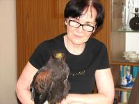 Zofia Brzozowska ratuje ptaki na szóstym piętrze wieżowca