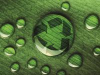 Greenwashing, czyli jak ustrzec się przed zielonymi oszustami?
