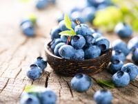 Borówka amerykańska owoc - właściwości, witaminy i wartości odżywcze borówki amerykańskiej
