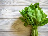 Szczaw warzywo - właściwości, witaminy i wartości odżywcze szczawiu