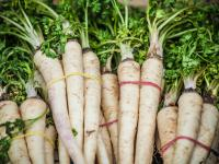 Pietruszka warzywo - właściwości, witaminy i wartości odżywcze pietruszki