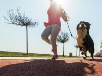 Zabierz psa na trening