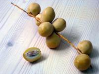 Daktyle owoce - właściwości, witaminy i wartości odżywcze daktyli