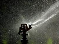 Jak prawidłowo podlewać ogród?