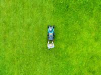 Jak uzyskać piękny trawnik wiosną?