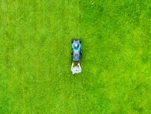 Trawnik wiosną – jak pielęgnować trawnik po zimie?