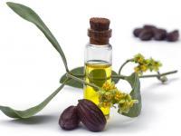 Olej jojoba - właściwości i działanie. Jak stosować olej jojoba?