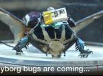 Cyborg chrząszcz będzie ratował ludzkie życie.