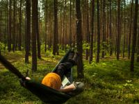 Gdy jesteś w stresie, pomocy szukaj w lesie