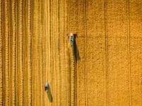 Bioróżnorodność kluczem do sukcesu nowoczesnego rolnictwa