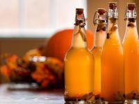 Kombucha – napój, który truje czy odtruwa?