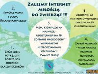 Gra miejska Planeta Zwierząt w Warszawie