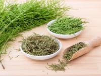Uwaga! Te zioła mogą zaszkodzić latem