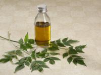 Olej z miodli indyjskiej – właściwości i działanie. Jak stosować olej z miodli indyjskiej?