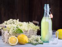 Przepis na wzmacniający syrop z kwiatów czarnego bzu