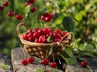 Prozdrowotne właściwości naparu z ogonków wiśni