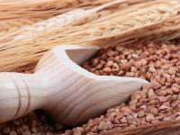 Kasza gryczana - właściwości i wartości odżywcze. Przepisy kasza gryczana