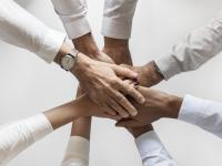 Podstawą każdego sukcesu w biznesie są ludzie. Wywiad z Beatą Drzewiecką-Bartczak z firmy DENDROS