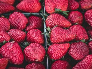 Jadalna powłoka, która chroni warzywa i owoce przed gniciem