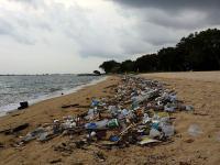 Jak zatruwamy morza i oceany plastikiem
