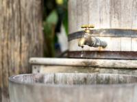 Łap deszczówkę - zmniejsz rachunki za wodę o połowę