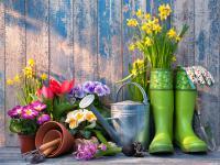 Jak zmniejszyć koszty zakładania ogrodu