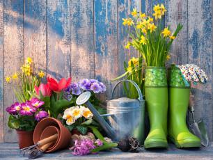 Koszty zakładania ogrodu. Jak tanio urządzić ogród?