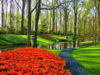 Metody oceny kondycji, witalności i statyki drzew z uwzględnieniem aspektu bezpieczeństwa
