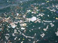 Plastikowe śmieci dotarły do najgłębszych części oceanu