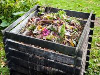 Jak zbudować kompostownik – krok po kroku