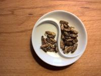 Jedz owady na zdrowie!