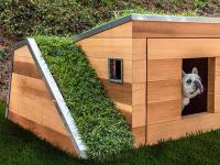 Luksusowa, ekologiczna buda dla psa