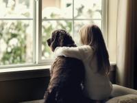 Kontakt ze psem bardziej satysfakcjonujący niż kontakt z rodzeństwem