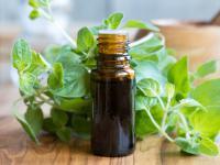 Olejek z oregano – naturalny antybiotyk do domowej apteczki