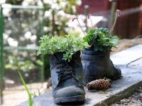 Jak przywrócić stare buty do życia?