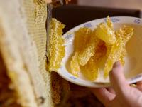 Wosk pszczeli – lek prosto z ula