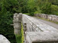 Tajemnica mostu psich samobójców