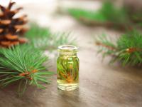 Olejek sosnowy – właściwości i działanie. Jak stosować olejek  sosnowy?