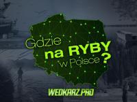 Gdzie się wybrać na ryby w Polsce?