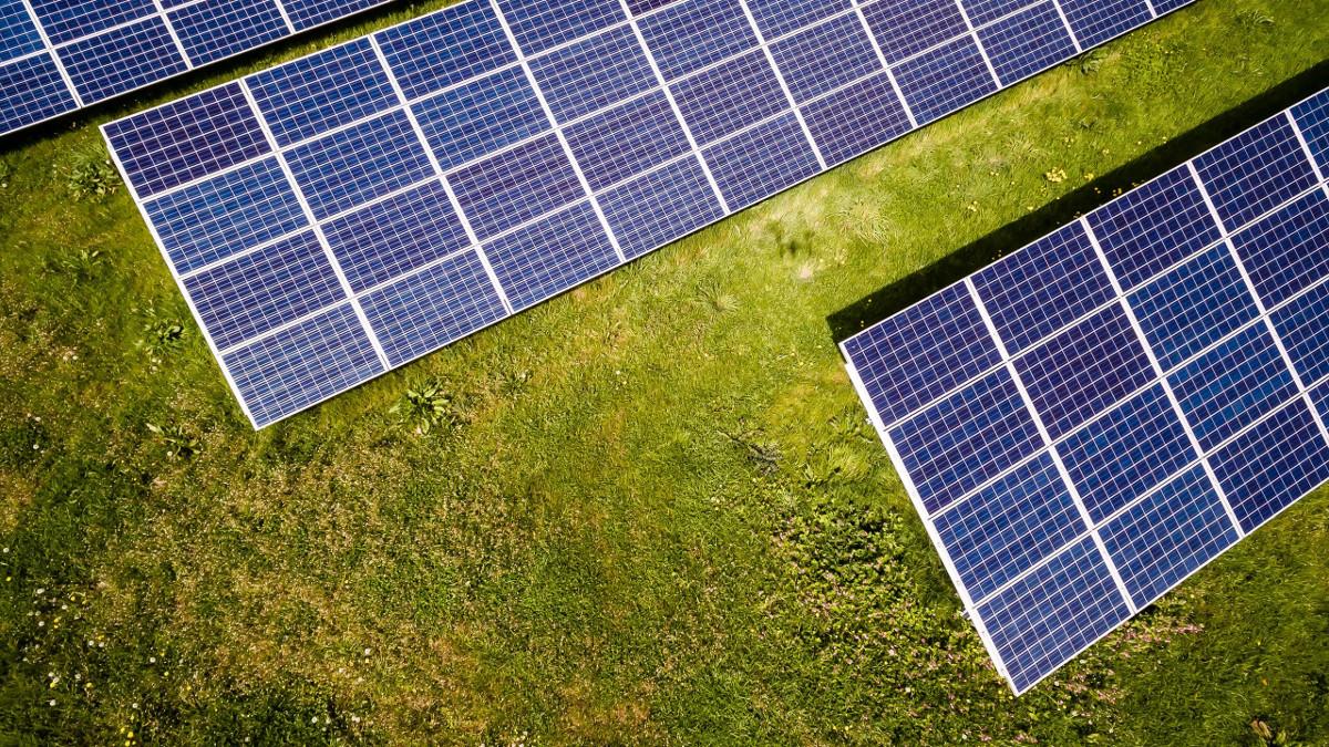 Panele słoneczne, które naśladują ruch roślin