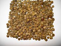 Pieprz zielony przyprawa – właściwości, działanie i zastosowanie pieprzu zielonego