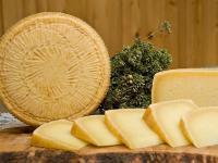 Ser pecorino – właściwości, skład i zastosowanie sera pecorino