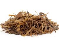 Herbata Lapacho – właściwości, działanie i zastosowanie herbaty Lapacho
