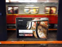 Stłoczone jak świnie w metrze