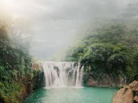 W zastraszającym tempie ubywa tropikalnych lasów